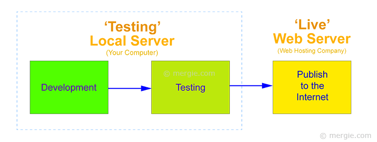 The Testing Server