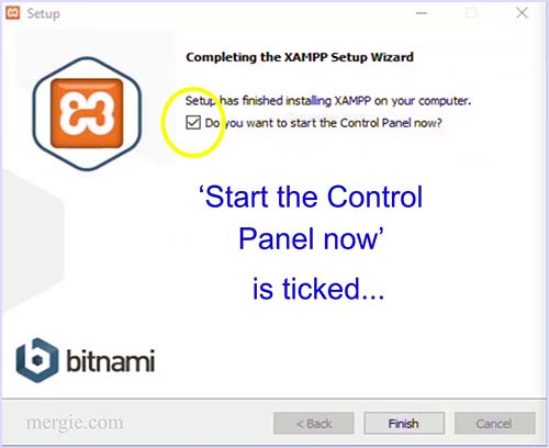Installing the Testing Server - Start the Control Panel - XAMPP