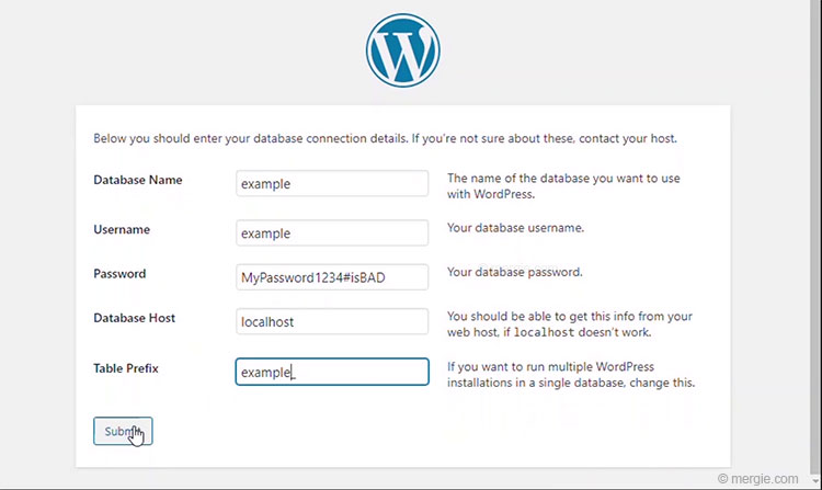 WordPress Installation - Enter the Database Connection Details