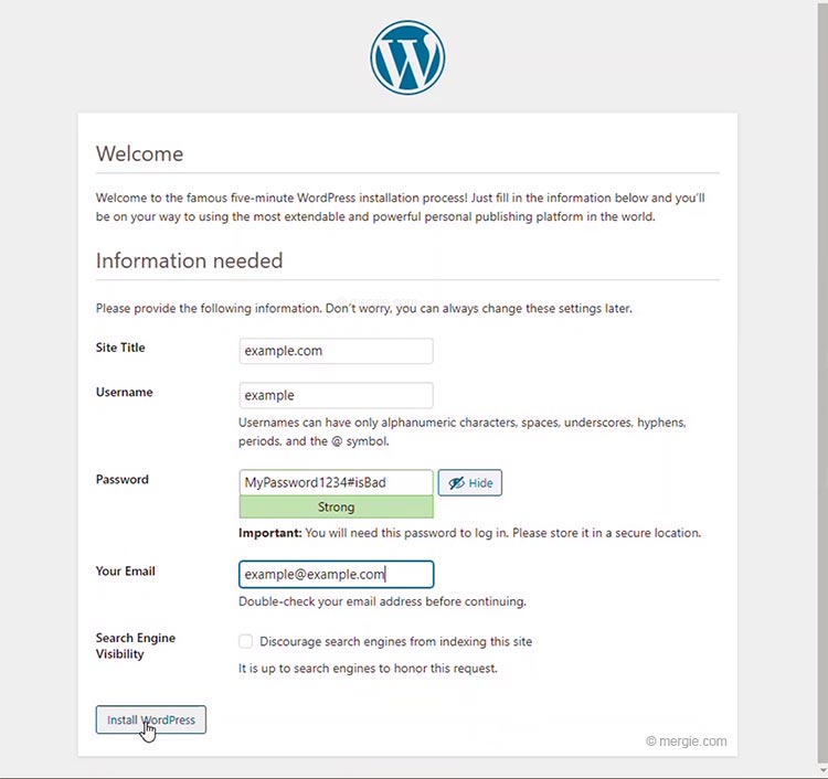 WordPress Installation - Enter the Site Details