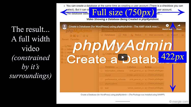 How to Change the Size of a Video on WordPress - Full Size Using the Functions.php File